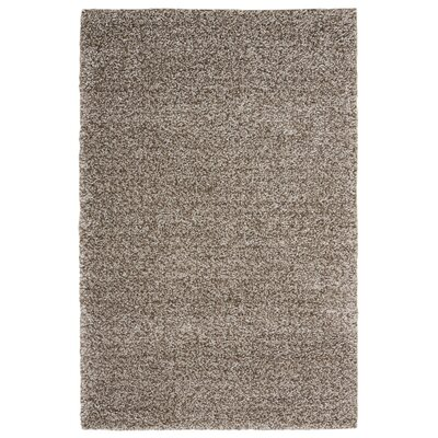 Kalypso Gray Area Rug Rug Size: Rectangle 82 x 10