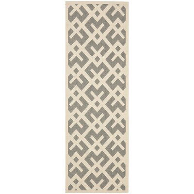 Quinlan Gray/Bone Indoor/Outdoor Area Rug Rug Size: Runner 24 x 67