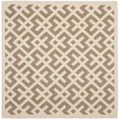 Quinlan Brown/Bone Outdoor Area Rug Rug Size: Square 4