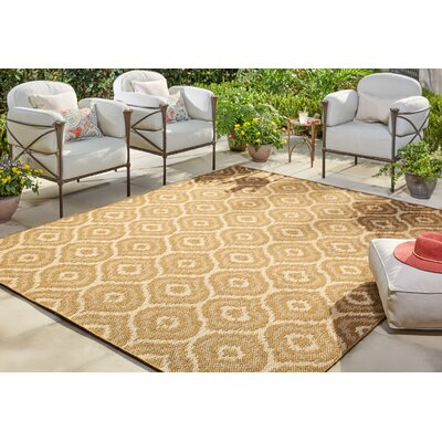 Aker Natural Indoor/Outdoor Area Rug Rug Size: Rectangle 53 x 76