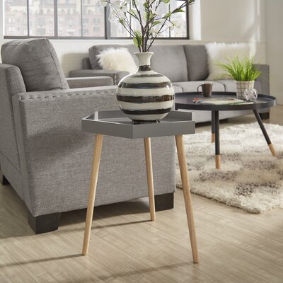Camden End Table Finish: Frost Gray