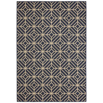 Aker Navy Indoor/Outdoor Area Rug Rug Size: Rectangle 53 x 76