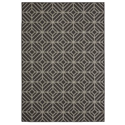 Aker Onyx/Gray Indoor/Outdoor Area Rug Rug Size: Rectangle 8 x 10