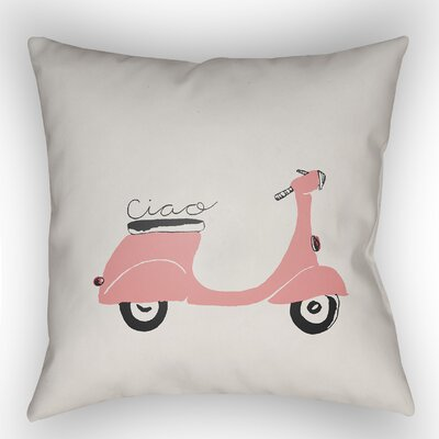 Alessa Indoor/Outdoor Throw Pillow Size: 20 H x 20 W x 4 D, Color: Pink