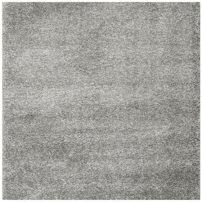 Arce Silver Area Rug Rug Size: Square 67