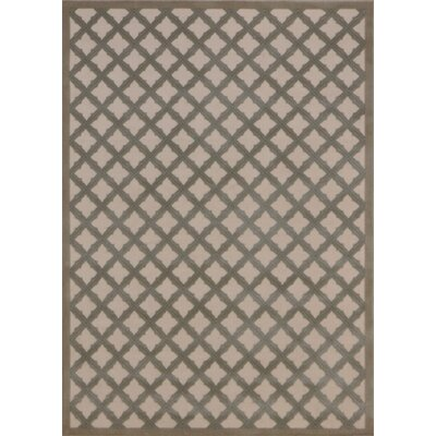 Zopyros Gray Area Rug Rug Size: Rectangle 53 x 73