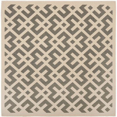 Quinlan Gray/Bone Indoor/Outdoor Area Rug Rug Size: Square 4