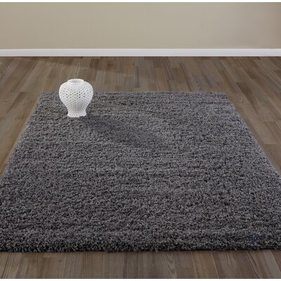 Bostrom Charcoal Area Rug Rug Size: Rectangle 67 x 93