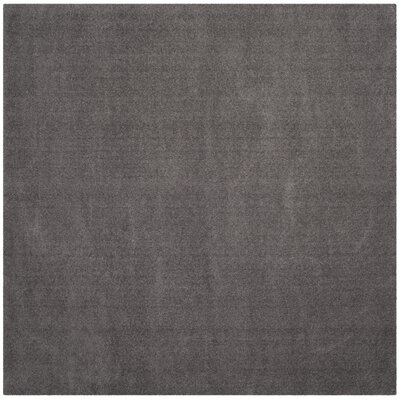 Blackstock Gray Area Rug Rug Size: Square 67