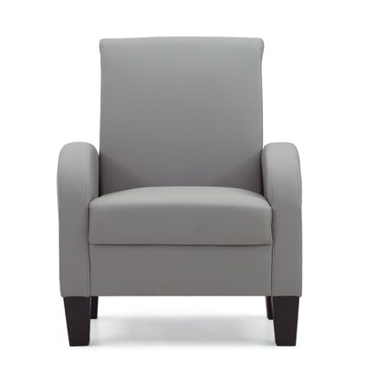 Tiff Occasional Armchair Color: Gray