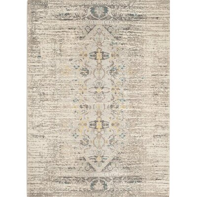Hydra Grey Area Rug Rug Size: Rectangle 12 x 18