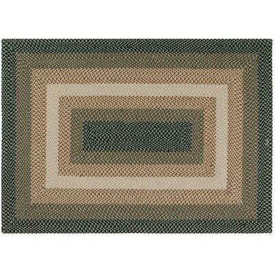 Monnie Green Area Rug Rug Size: 5 x 7