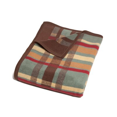 Moreno Tartan Plaid Cotton Blend Blanket Color: Dusty Sage/Multi