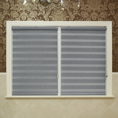 Premium Blackout Roll-Up Shade Color: Light Gray, Size: 28 W x 64 L