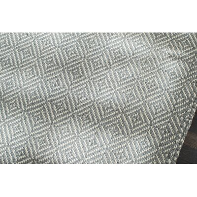 Flatweave Hand-Woven Gray/White Area Rug Rug Size: Rectangle 5 x 8