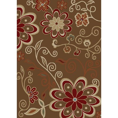 City Lauren Chocolate Area Rug Rug Size: 8 x 10