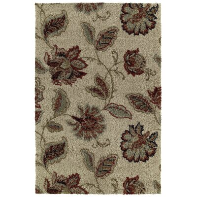 Shaggy Supreme Beige Floral Farland Area Rug