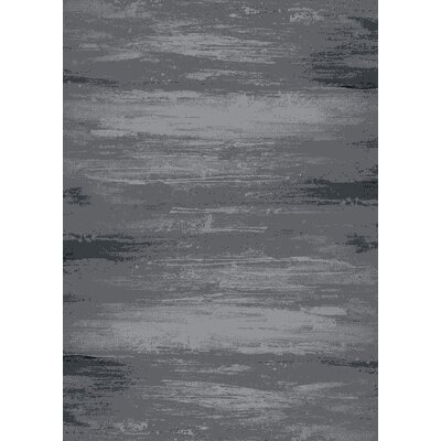 Augusta Canyon Gray Area Rug Rug Size: 53 x 73