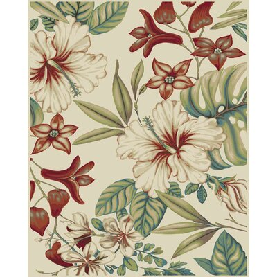 Brookwood Multi Area Rug