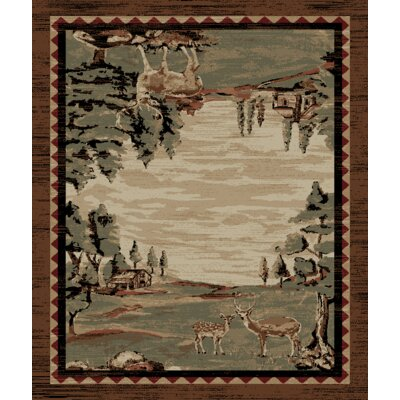 Lodge King Brown Area Rug Rug Size: 53 x 77
