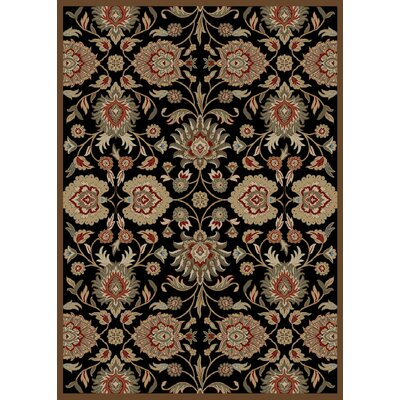 Timeless Black Area Rug Rug Size: Rectangle 5 x 8