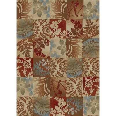 Timeless Flowers Squared Area Rug Rug Size: Rectangle 5 x 8