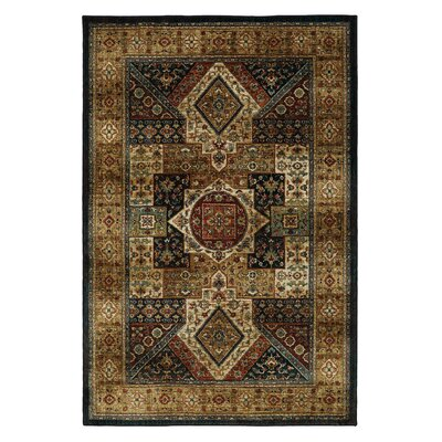 Finely Area Rug Rug Size: 53 x 710