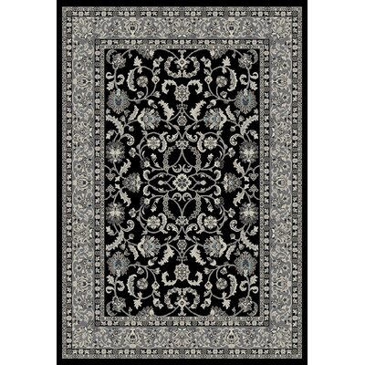 Stratford Keshan Black Area Rug Rug Size: Rectangle 53 x 77