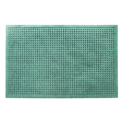 Eco-Poly Indoor/Outdoor Doormat Color: Green