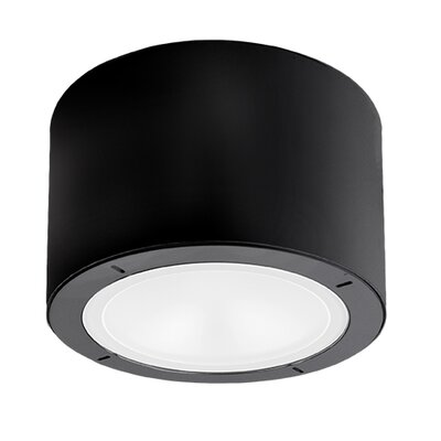 Vessel 1-Light LED Flush Mount Finish: Black