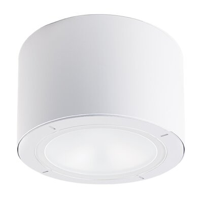 Vessel 1-Light Outdoor Flush Mount Finish: White