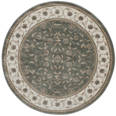 Light Green Area Rug Rug Size: Round 710