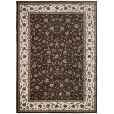 Brown Area Rug Rug Size: Rectangle 53 x 73