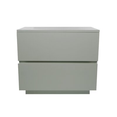 Equis 2 Drawer Nightstand Finish: White