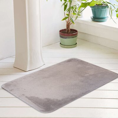 Eleanora Plush Memory Foam Anti-Fatigue Bath Rug Color: Silver Cloud, Size: 17 W x 24 L