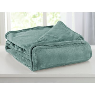 Portland Plush Super Soft Ultra Velvet Blanket Size: Twin, Color: Blue Surf