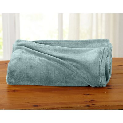 Jemma Ultra Velvet Plush Oversize Throw Color: Blue Surf