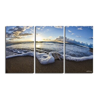 'Sea Star' 3 Piece Photographic Print on Wrapped Canvas Set