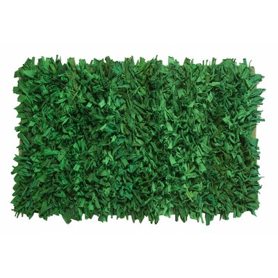 Newberg Shaggy Hand-Woven Green Area Rug Rug Size: Rectangle 2 x 3