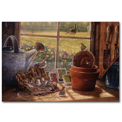 Garden Shed Wren Painting Print on Wood Size: 16