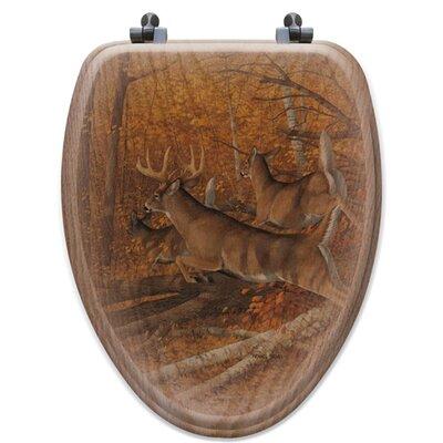 Maple Rush Oak Elongated Toilet Seat