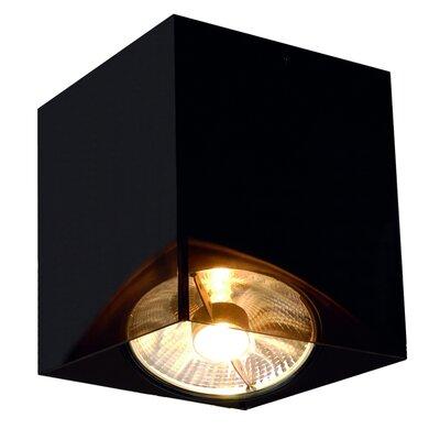 Acrylic Box 1-Light Flush Mount