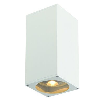 Theo 2-Light Flush Mount Finish: White