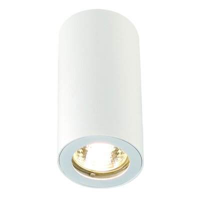 Enola 1-Light Flush Mount Finish: White