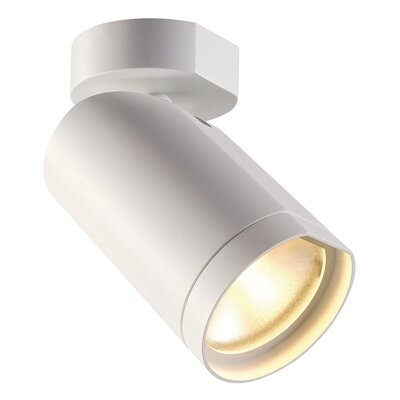 Bilas Spot Single 1-Light LED Spotlight Finish: White