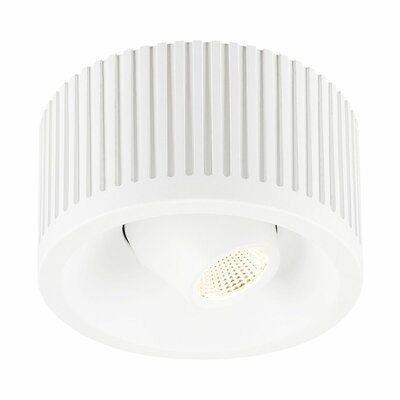 Rhyne Modern 1-Light LED Flush Mount