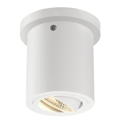 Richards Contemporary 1-Light LED Flush Mount Fixture Finish: White