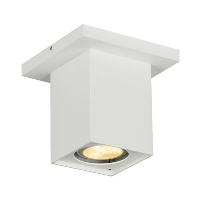 Altra Dice 1-Light Flush Mount Finish: White
