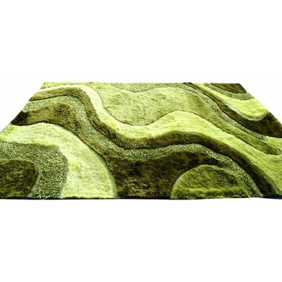 Shaggy Carpet Rug Size: 4 x 6, Color: Green
