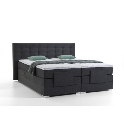 grey holz boxspringbetten online kaufen m bel. Black Bedroom Furniture Sets. Home Design Ideas